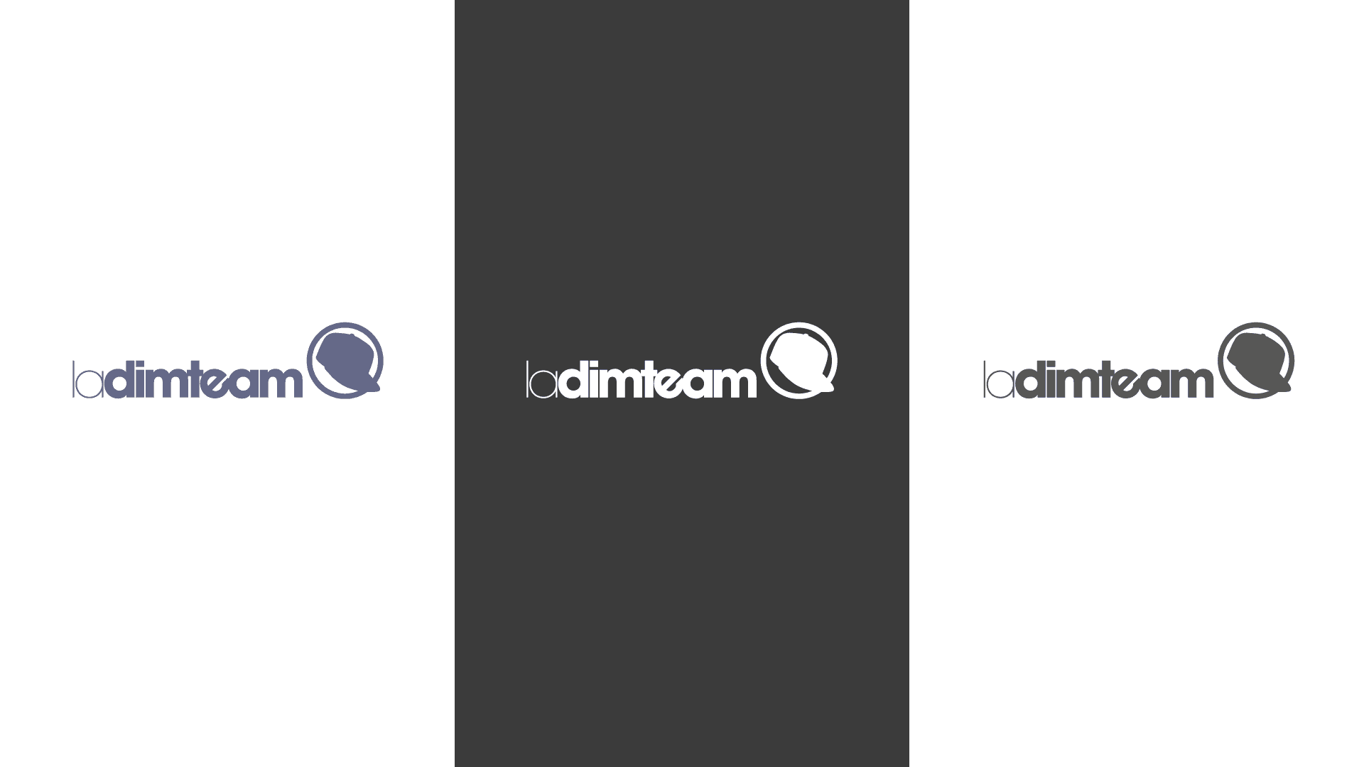 Logotype La Dimteam